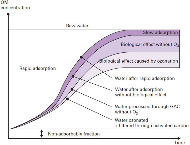 The BAC (biological activated carbon concept) - Degremont®