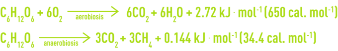 Formula: aerobic cultures, anaerobic cultures - development of glucose