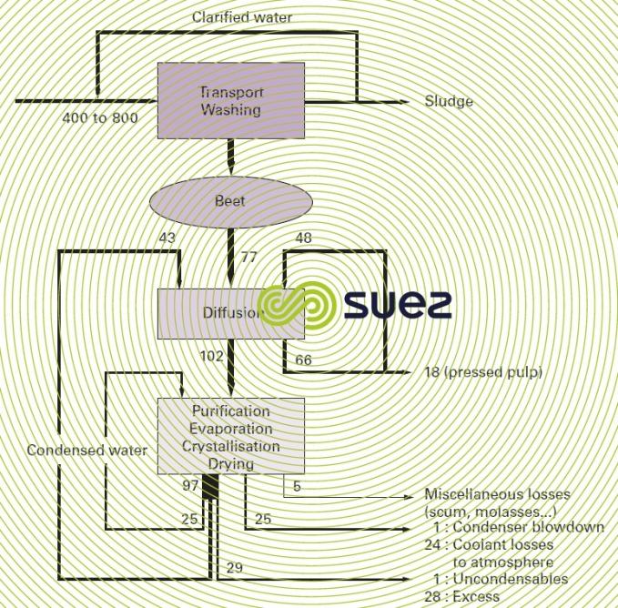 water cycle sugar beet factory