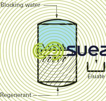 Water blocking ion exchangers