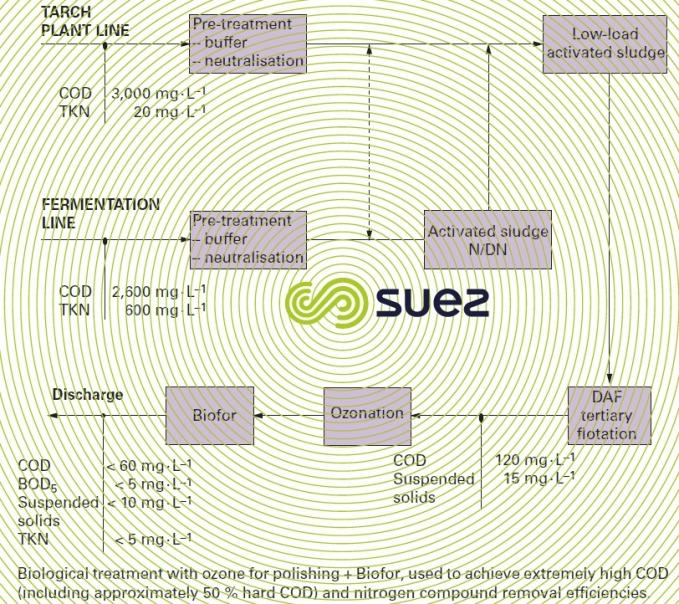 Starch - glucose