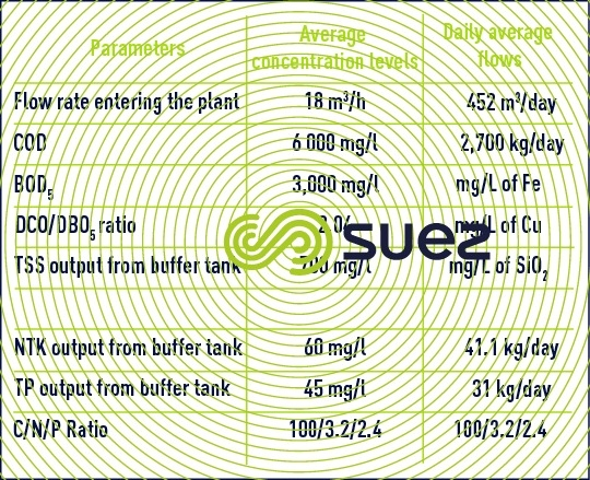 raw effluent plant inlet